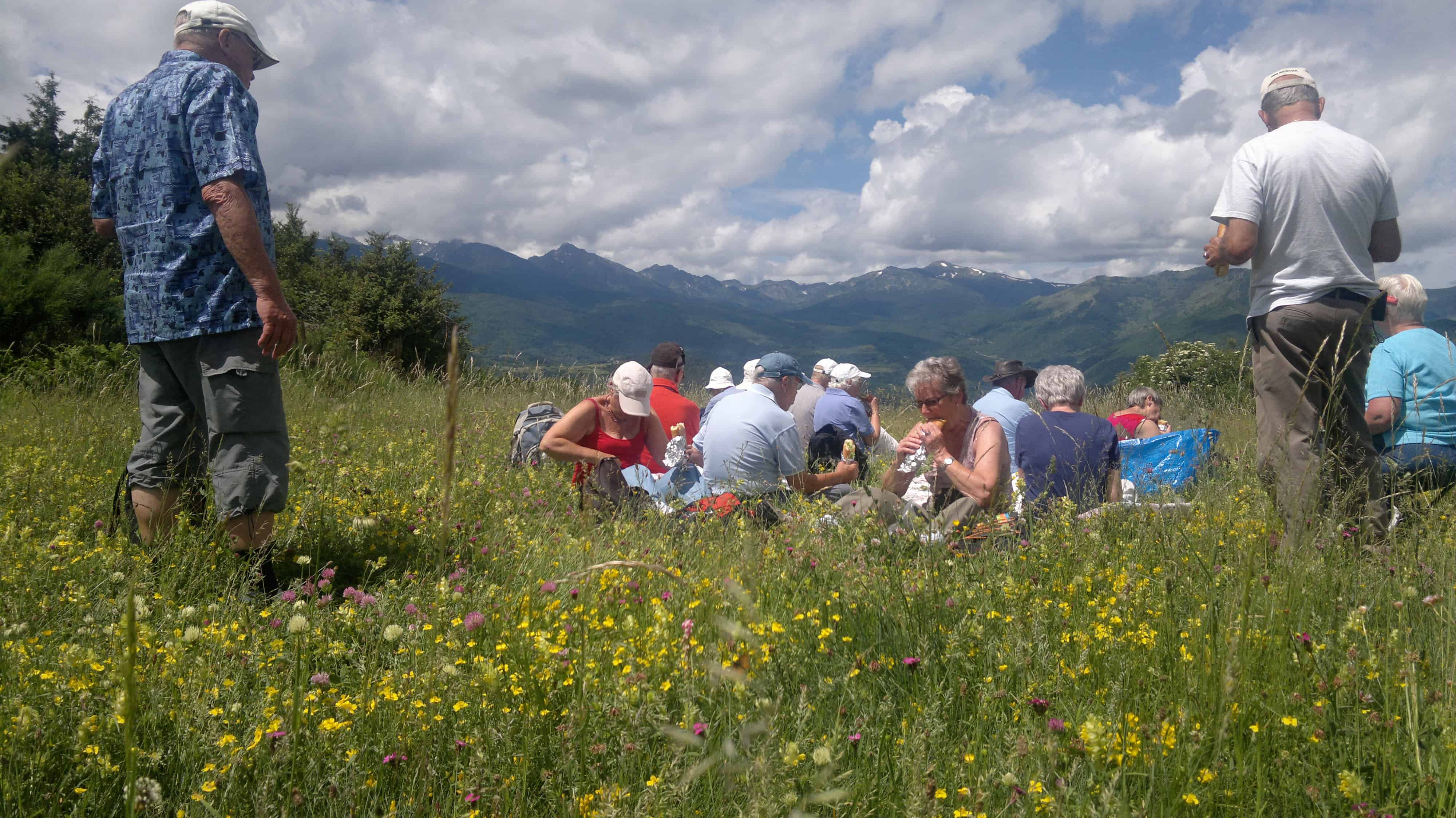 Gruppe af mennesker spiser sandwich i græsset med gule blomster. Bjergene ses i baggrunden
